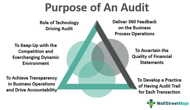 Purpose of An Audit