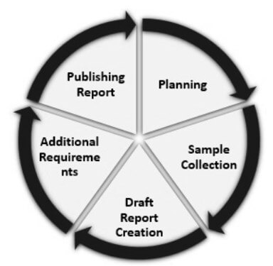 Stages of Audit Cycle