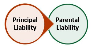 Types of Vicarious Liability