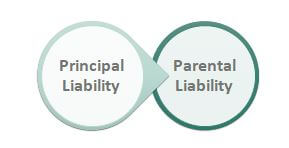 Vicarious Liability Types