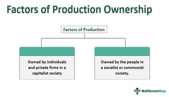 Factors of Production Ownership