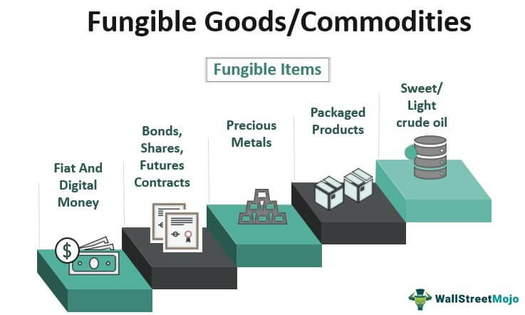 Fungible Goods